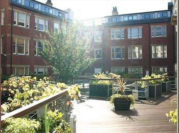 EasyRoommate UK - Room to rent in Leeds city center, Leeds - £440 pcm