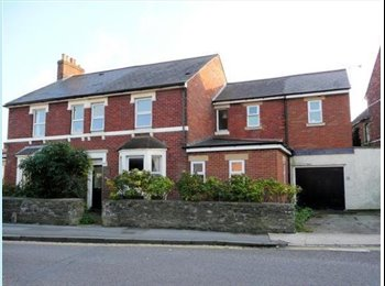 EasyRoommate UK - Double rooms with en-suite - Old Town, Swindon - £500 pcm