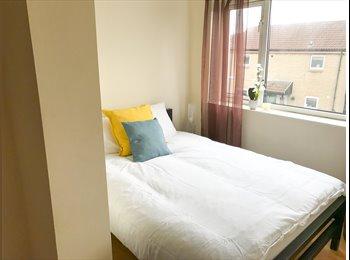 EasyRoommate UK - Spacious Double Room, Barnsley - £310 pcm