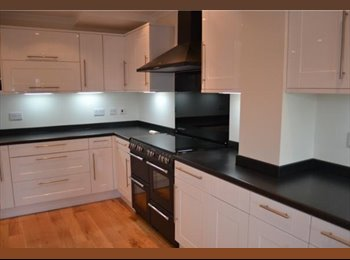 EasyRoommate UK - Lovely Large Unfurnished Double Bedroom to rent £440 per month from 1st June!, Bishopston - £440 pcm