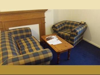 EasyRoommate UK - Room in city centre, Sheffield - £275 pcm