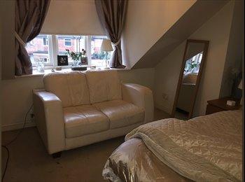 EasyRoommate UK - Massive Room in Stoneygate, Stoneygate - £450 pcm
