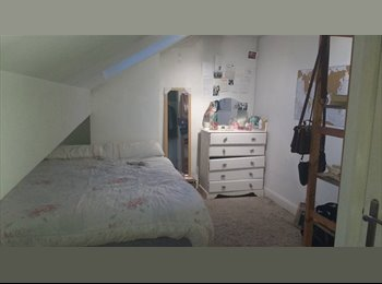 EasyRoommate UK - Amazing Double Attic Room - East Finchley, Fortis Green - £607 pcm
