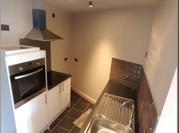 EasyRoommate UK - BRAND NEW STUDIO APARTMENT IN COVENTRY FOR £650PCM – FULLY FURNISHED! , Barras Heath - £650 pcm