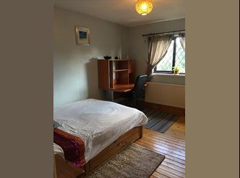 EasyRoommate UK - Large Double Room, Hemel Hempstead - £495 pcm