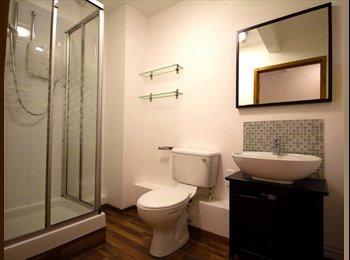 EasyRoommate UK - Double room in amazing apartment off West Street, Netherthorpe - £396 pcm