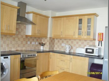 EasyRoommate UK - Great 4 bed student house. Winton. Available for 2017/ 2018 academic year, Ensbury Park - £375 pcm