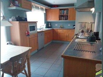 EasyRoommate UK - Frendily family home, Saint Ives - £500 pcm