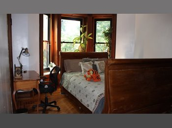 EasyRoommate US - Looking For a Safe Quiet Home, to Call Home, Brooklyn - $1,300 pm