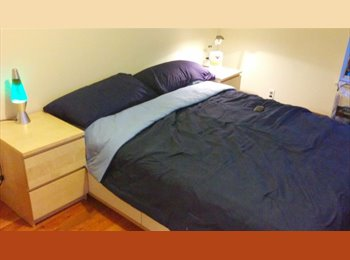 EasyRoommate US - Bedroom - Close to EVERYTHING - fun &responsible roommate, Bath Beach - $600 pm