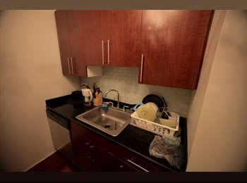 EasyRoommate US - ROOM IN FINANCIAL DISTRICT , Financial District - $1,800 pm