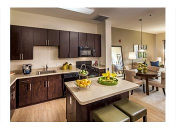 EasyRoommate US - Private Bedroom/Bathroom For Rent in Luxury Apartment Complex, Franklin Township - $1,500 pm