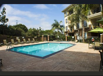 EasyRoommate US - LA JOLLA APARTMENT, University City - $925 pm