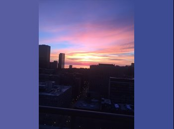 EasyRoommate US - Seeking female roommate for amazing South Loop/Printers Row 2 bed/2 bath with awesome views, Chicago - $1,300 pm