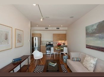 EasyRoommate US - Luxury Style 1 bedroom , Prospect Lefferts Gardens - $2,150 pm