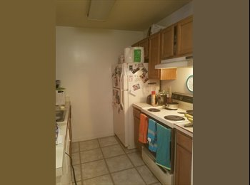 EasyRoommate US - Great Bedroom available in a great location - Must love cat and dog!, Radnor - Fort Myer Heights - $900 pm