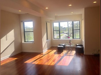 EasyRoommate US - Sunny private bed/bath available.  Overlooking the park! , Humboldt Park - $850 pm