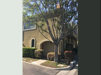 EasyRoommate US - Great Room for Rent in Aliso Viejo, Aliso Viejo - $900 pm