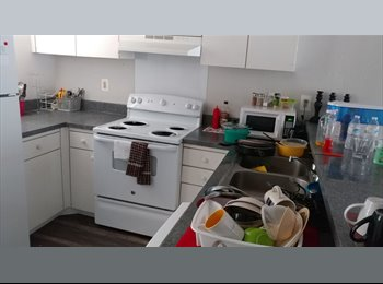 EasyRoommate US - Shared Room at Plano available for immediate move in $303, Plano - $300 pm