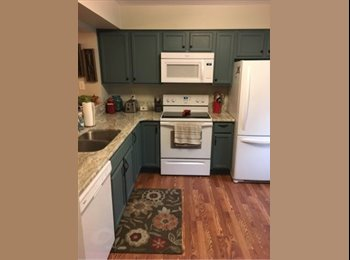 EasyRoommate US - Bedroom for rent in updated two bedroom townhouse, Lynnhaven - $800 pm