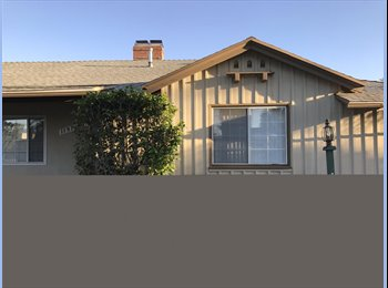 EasyRoommate US - 1 ROOM AVAILABLE NOW - $550 - SUMMER SPECIAL - UTILITIES INCLUDED, North Hollywood - $550 pm