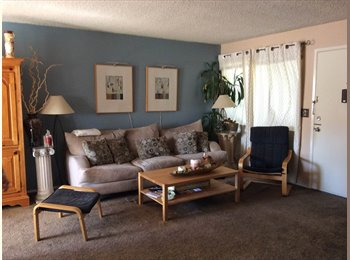 EasyRoommate US - Great Room in Awesome Neighborhood , University Heights - $800 pm