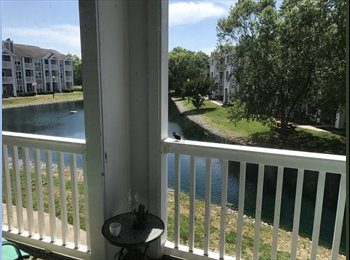 EasyRoommate US - Beautiful 1 bedroom with private bathroom and tennis courts , Northeast Virginia Beach - $500 pm