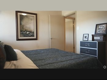 EasyRoommate US - Room lease for $274, Spring Branch East - $274 pm
