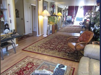 EasyRoommate US -  room for rent, Washington Virginia Vale - $850 pm