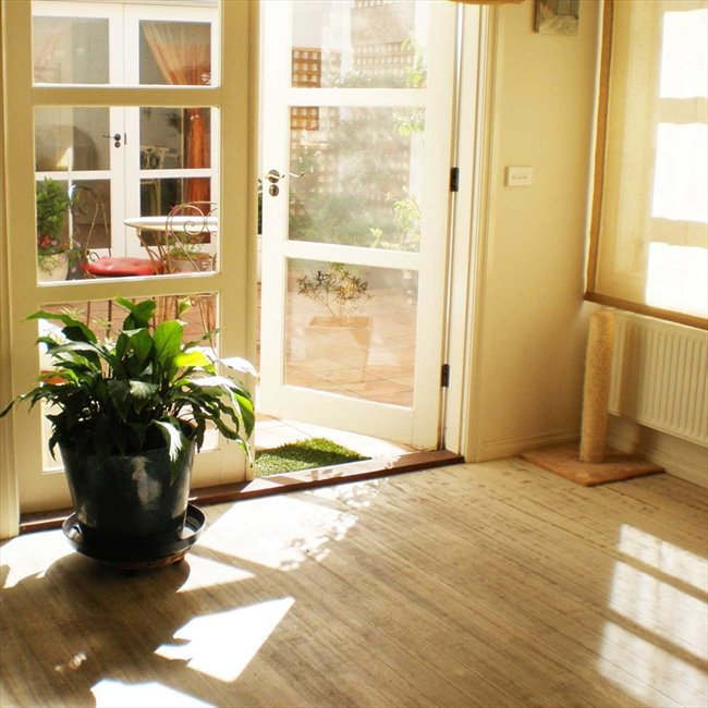 Room to rent in Collingwood - A peaceful home in a great location - Image 1