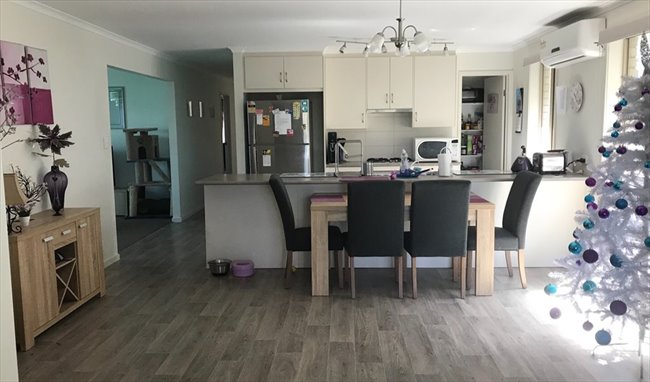 Room to rent in Elizabeth Town - Housemate Wanted! - Image 3