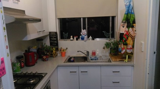 Room to rent in Elizabeth Town - Looking for a Flat Mate  - Image 1
