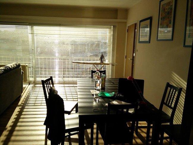 Colocation à La Louvière - petite chambre dans appartement meublé au 4e étage d'un immeuble   Appartager - Image 3