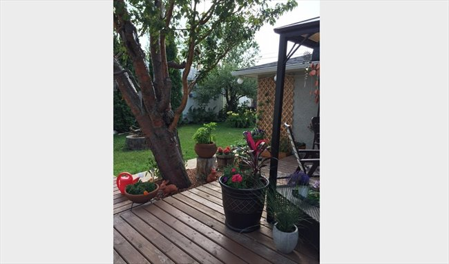 Room for rent in Edmonton - Out of town and looking for a room??? - Image 1