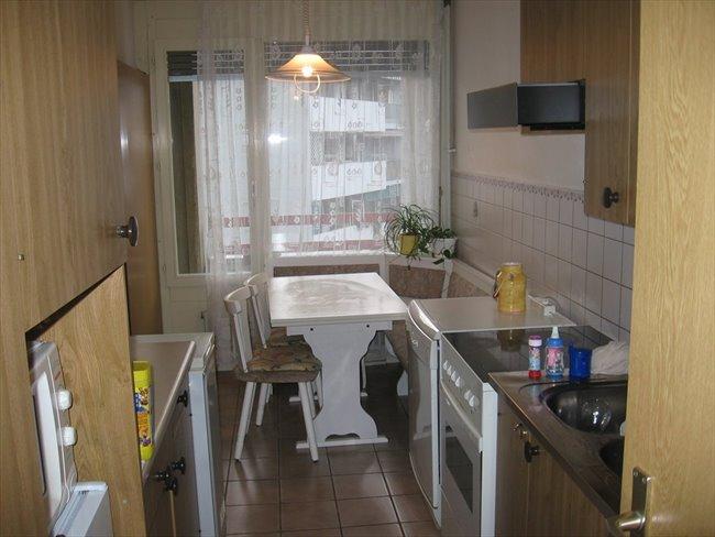Colocation à Genève - GENEVE CAROUGE, chambre meublée / furnished sublet | EasyWG - Image 2