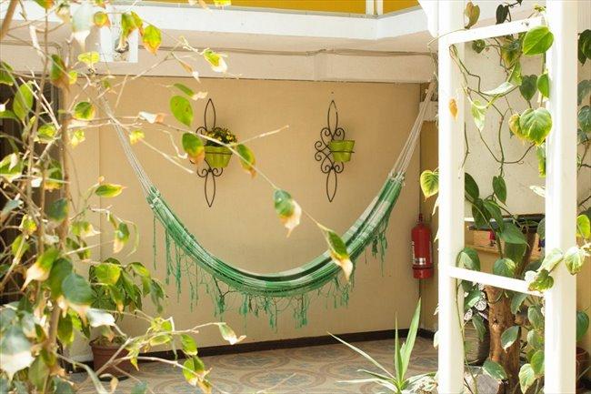 Pieza en arriendo en Antofagasta - Arriendo habitaciones con baño privado sector sur coviefi | CompartoDepto - Image 6
