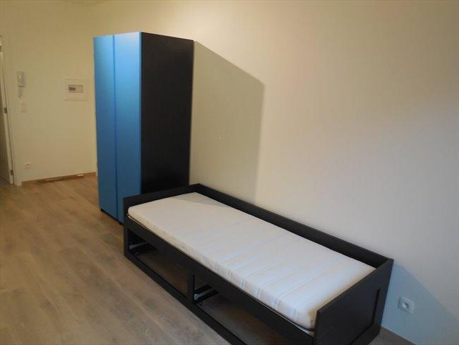 Koten te huur in Antwerpen-Anvers - Room - Students | EasyKot - Image 6