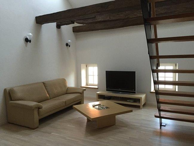 Colocation à Diekirch - Einmalig charmante Unterkunft   Appartager - Image 1