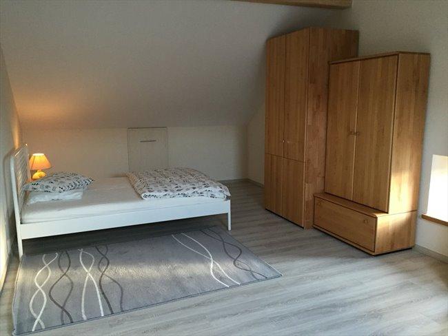 Colocation à Diekirch - Einmalig charmante Unterkunft   Appartager - Image 2