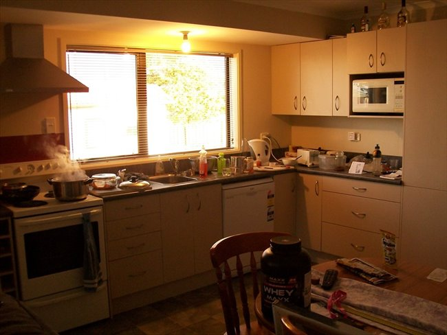 Room to rent in Invercargill - Room available - Image 2
