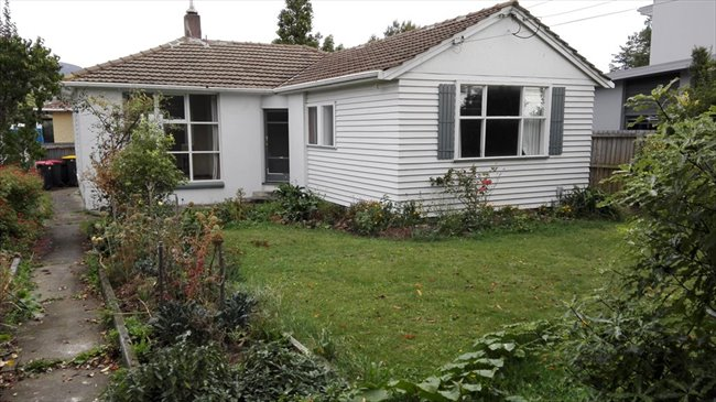 Room to rent in Christchurch - Flatmate wanted - Image 1