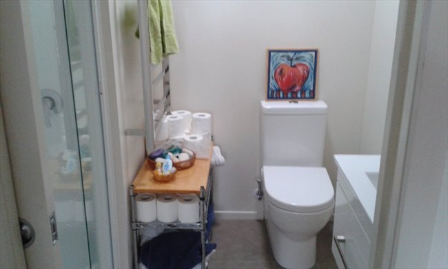 Room to rent in Hamilton - Female flatmate - Image 3