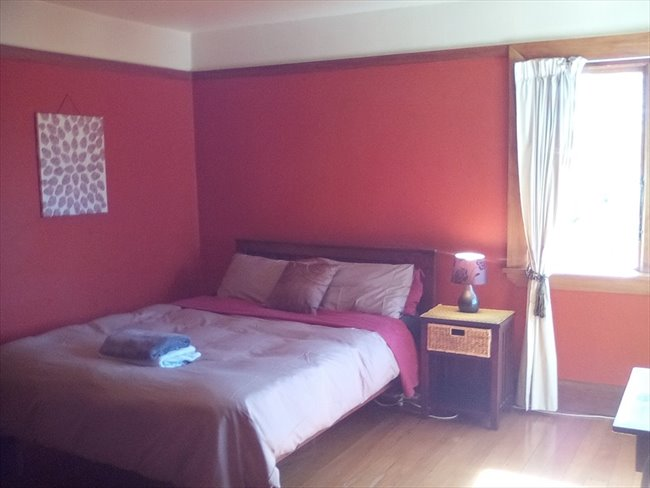 Room to rent in Christchurch - Neat room in big house - Image 1
