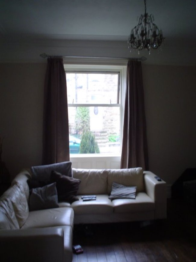 Room to rent in New Farnley - MASSIVE HOUSE PERIOD FEATURES - Image 2
