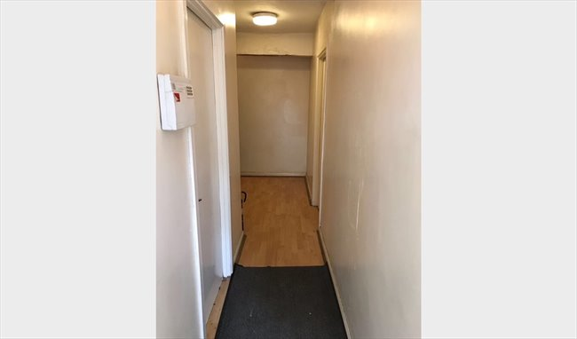 Room to rent in Hall Green - SINGLE ROOM TO LET IN HALL GREEN - Image 4