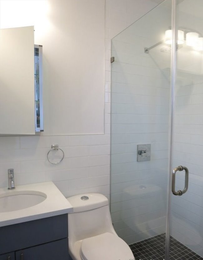 Room For Rent With Private Bath Next Train 1 Elevator Laundry Roommatehome
