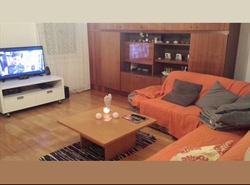 EasyWG AT - Suche Mitbewohner in Wels :), Wels - 250 € pm