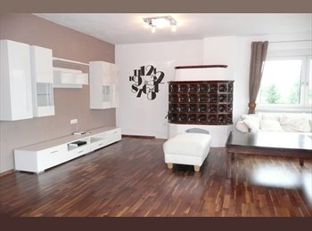 EasyWG AT - Große helle Wohnung in Laakirchen , Wels - 350 € pm