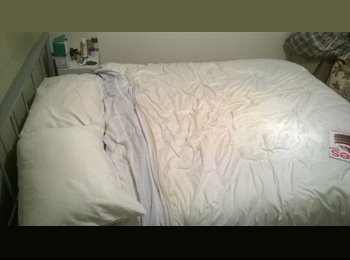 EasyRoommate AU - Spare room to rent out, Balmoral - $170 pw