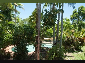 EasyRoommate AU - Large clean bedroom with pool and lush tropical garden, Whitfield - $220 pw